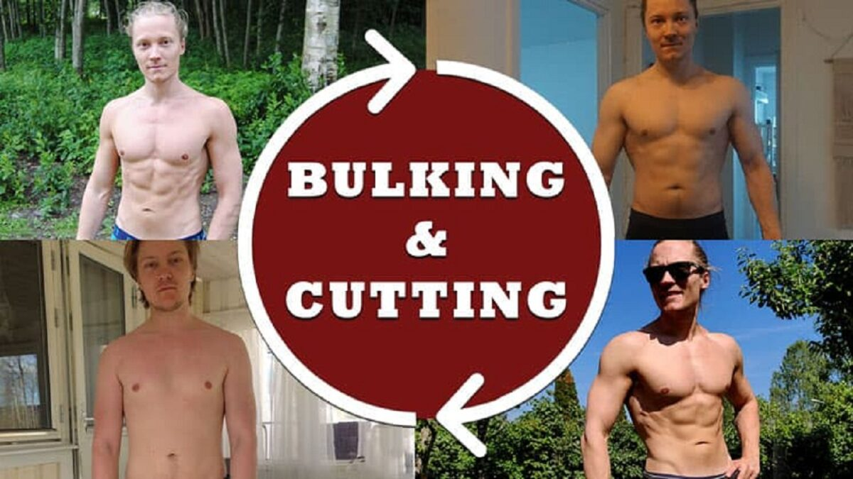 bulking-and-cutting-cycle