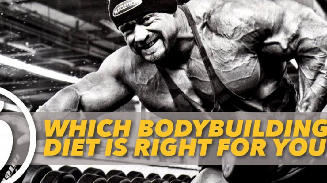 Bodybuilding Diet For Beginners