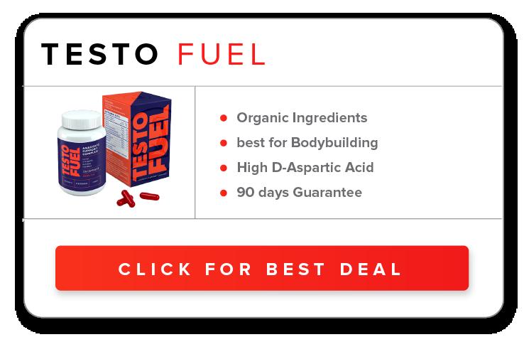 Order Testo Fuel