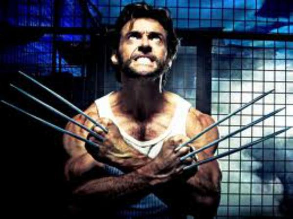 Wolverine Steroids