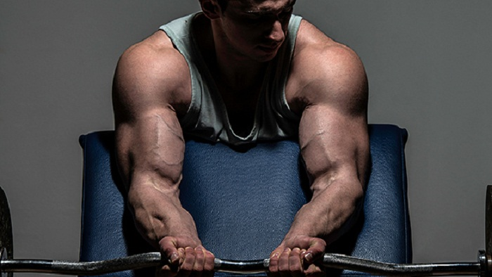 hardgainers-workout-plan