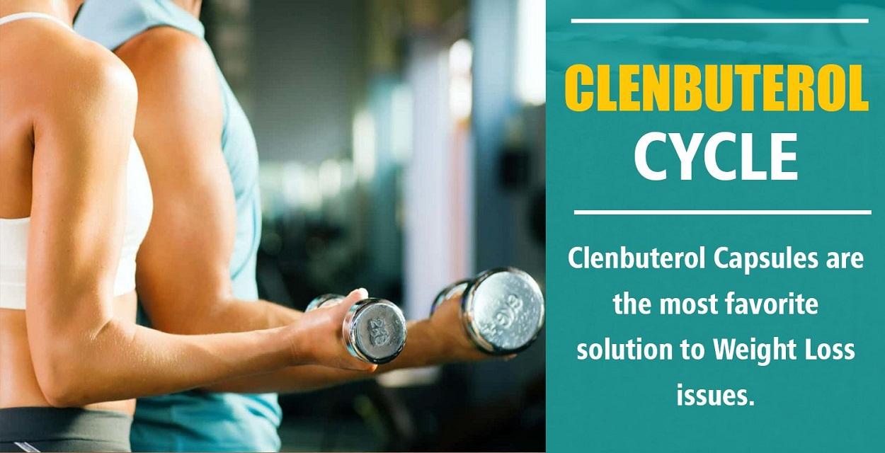 Clenbuterol Cycle