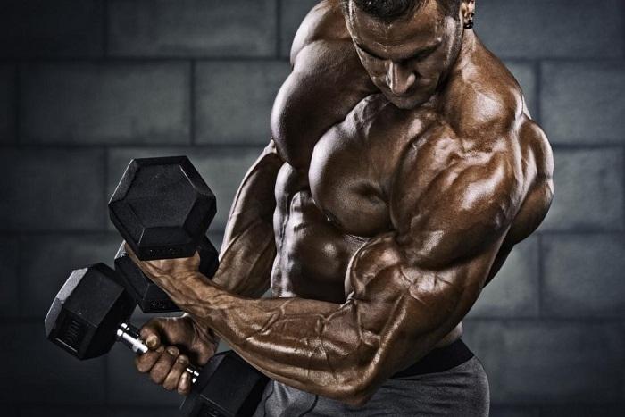 muscular-man-prohormones
