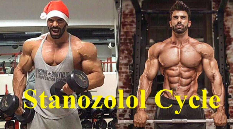 Stanozolol Cycle