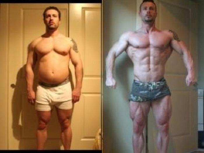 LGD 3033 In Bodybuilding
